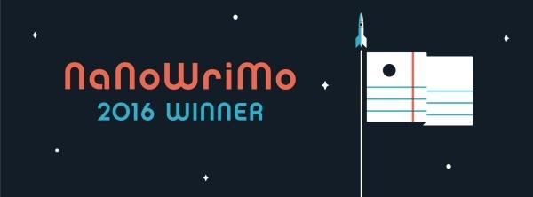 nano2016_winner